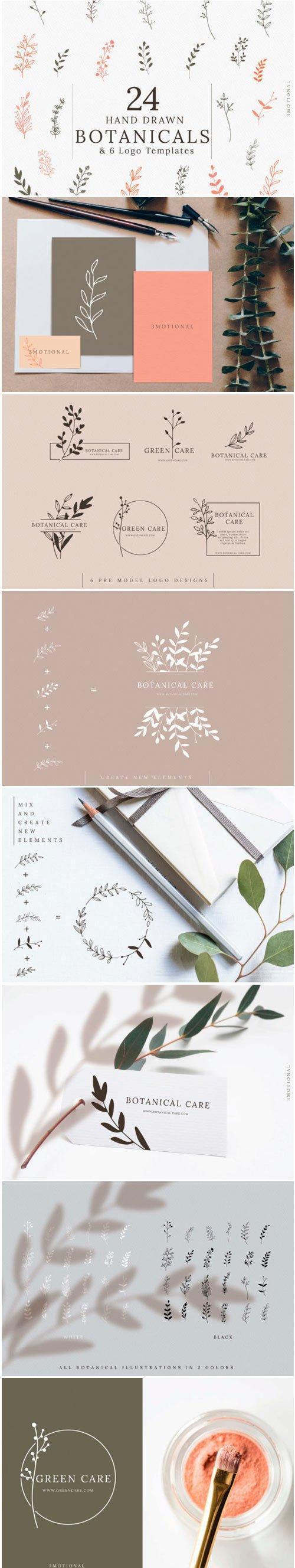 Hand-drawn Botanical Illustrations 1574363