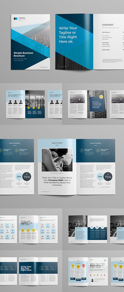 Brochure Layout with Blue Geometric Elements 249195516 INDT