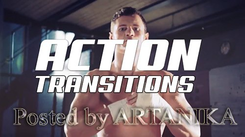 Action Transitions 198833
