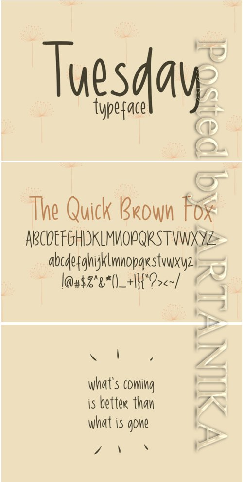 Tuesday Font