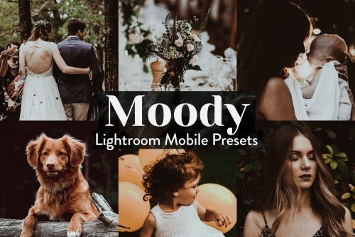 CreativeMarket - Moody Lightroom Presets Mobile 4015357