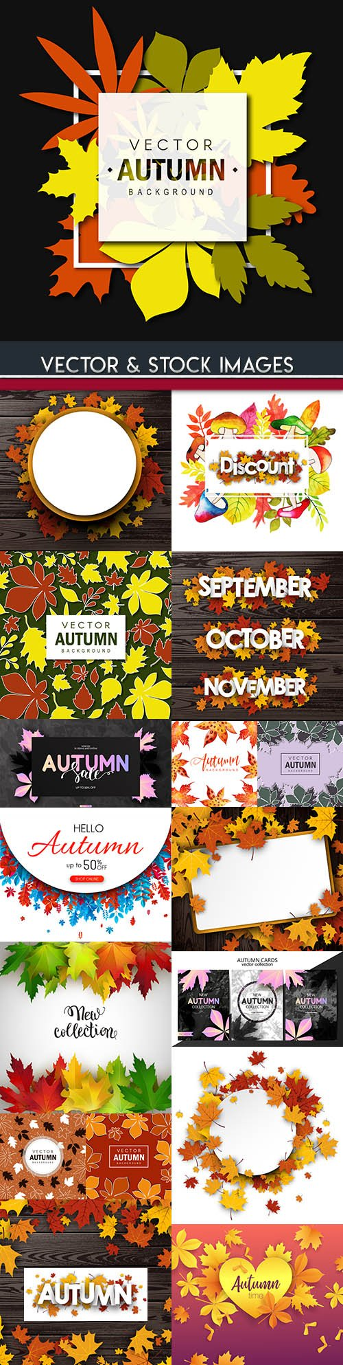 Autumn leaves decorative colourful background