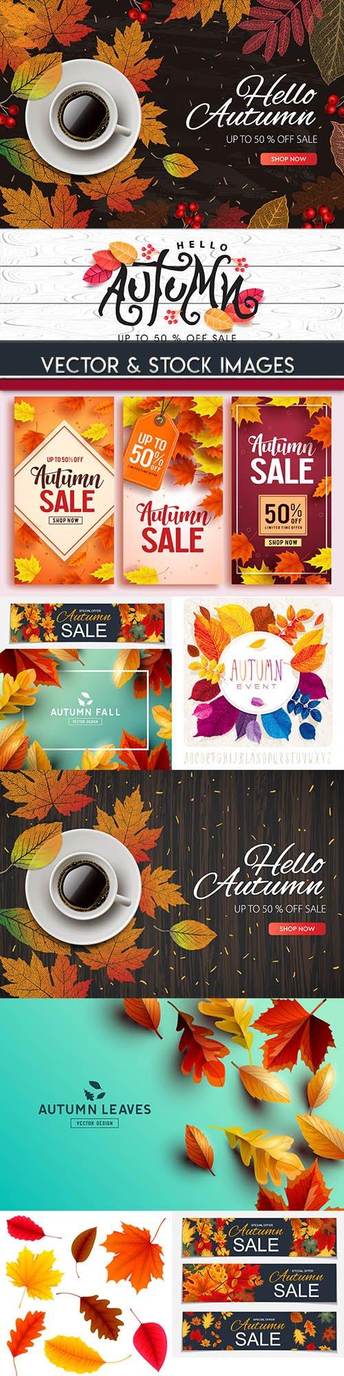 Autumn leaves decorative colourful background 2