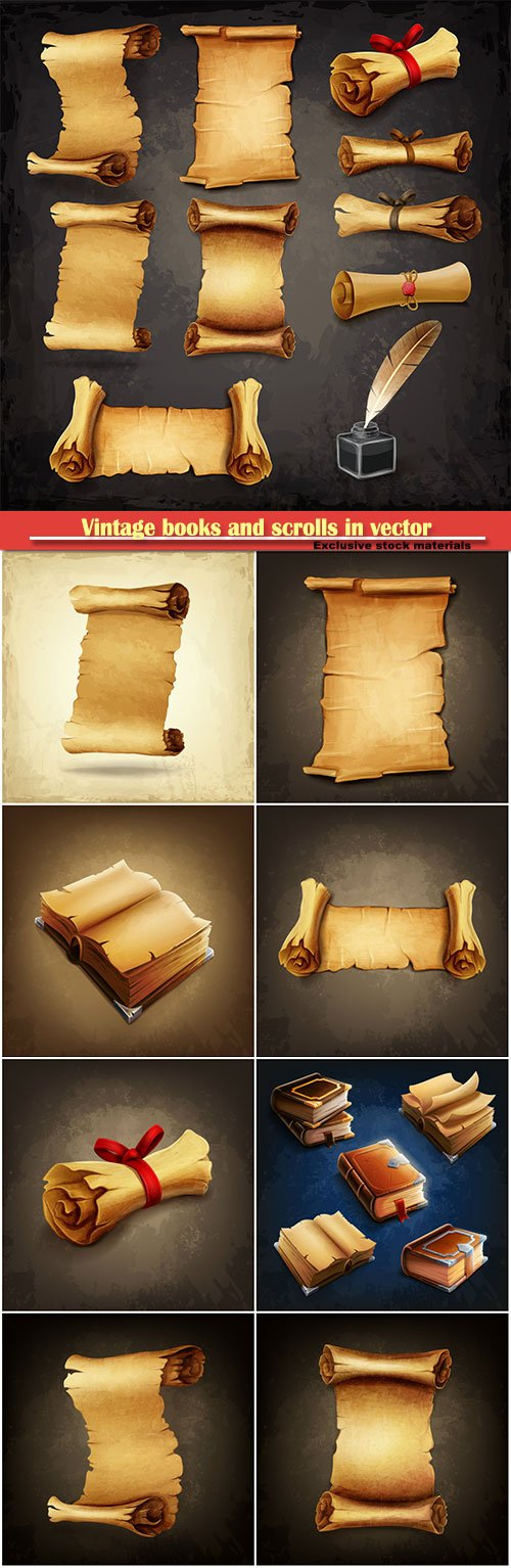 Vintage books and scrolls in vector
