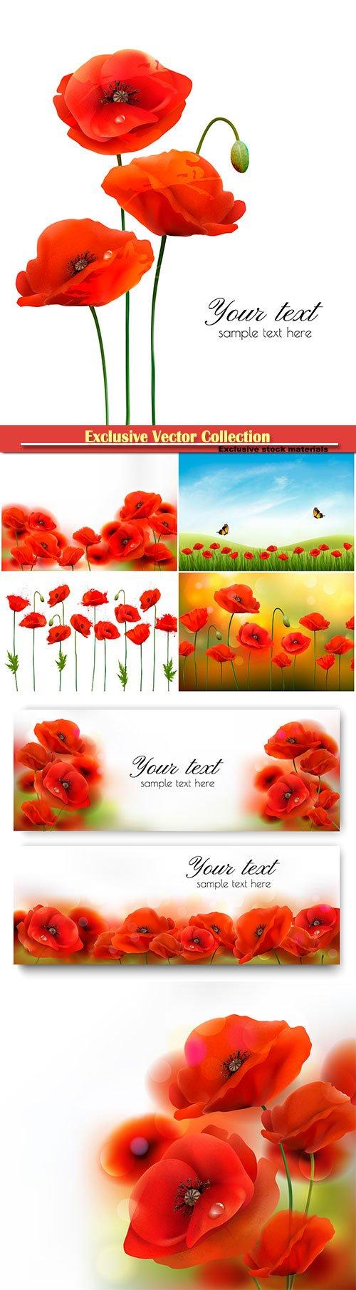 Red poppy flower background vector illustration
