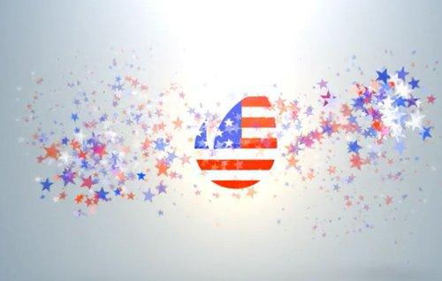 USA Ptriotic Logo 16281176