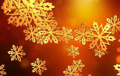 Snowflakes Logo 6122075