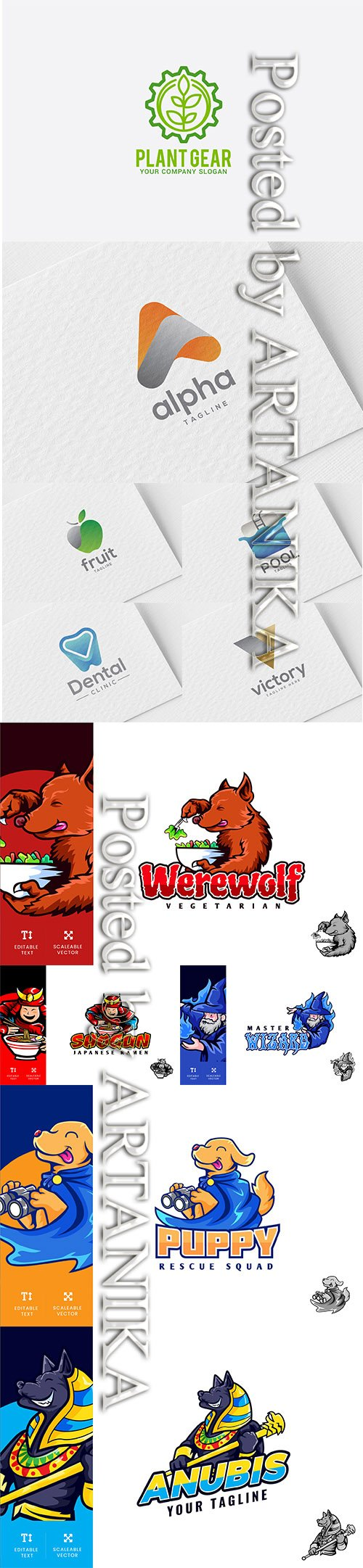 Logo Template and Illustration Vector Set