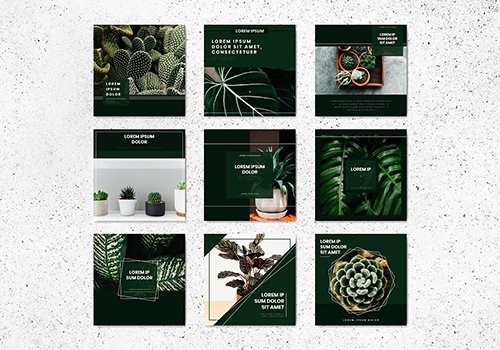 Tree Banner Template Collection 845699