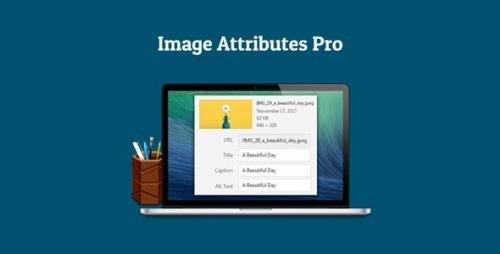 Auto Image Attributes Pro v1.3 - WordPress Plugin