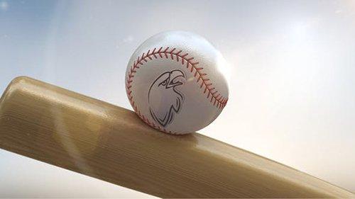 Baseball Logo On Ball 24692344
