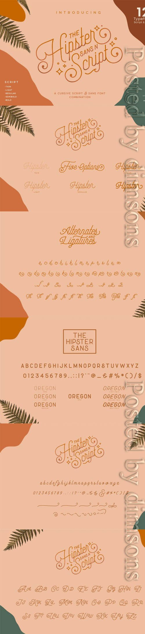 Hipster Style Script and Sans Typeface