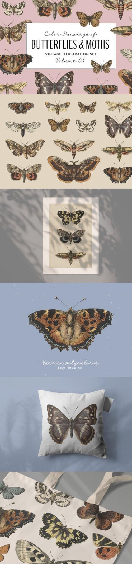 Butterflies & Moths Vintage Graphics Vol. 3 PNG