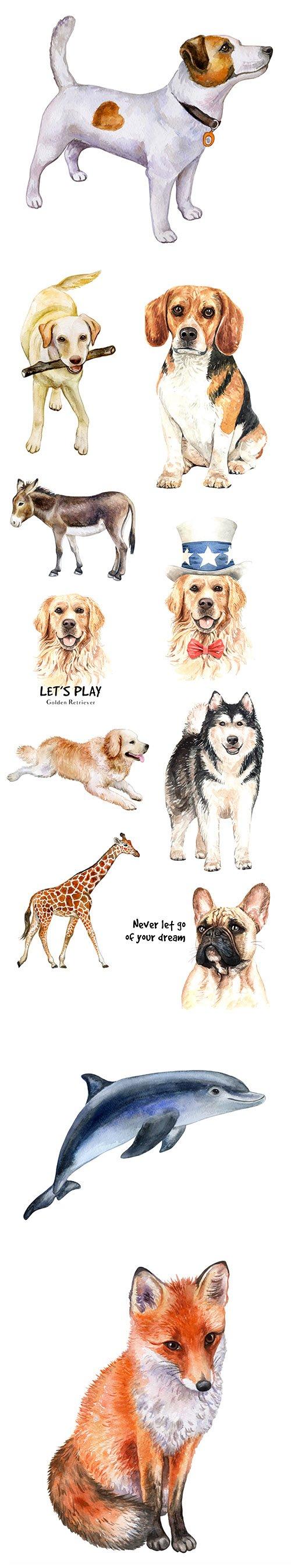 Watercolor Printing Animals Vol 3