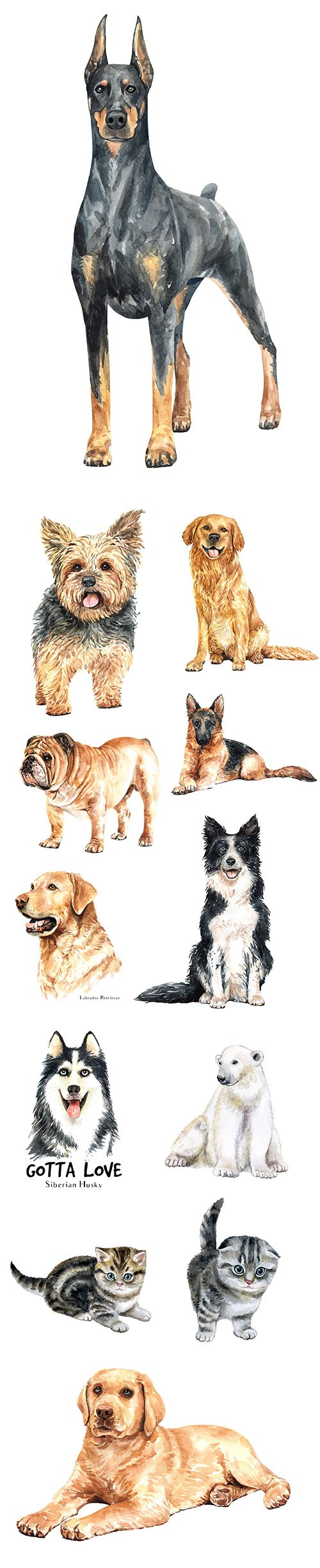 Watercolor Printing Animals Vol 7