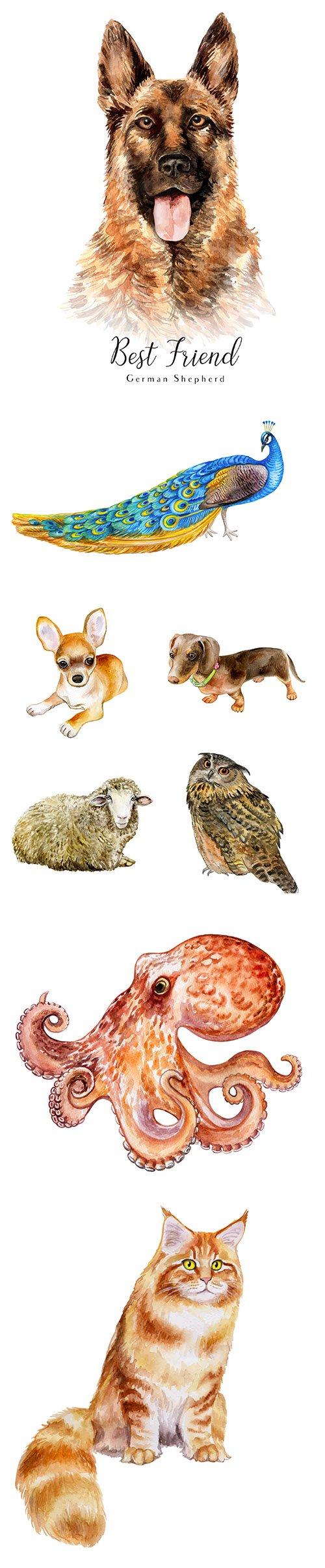 Watercolor Printing Animals Vol 9