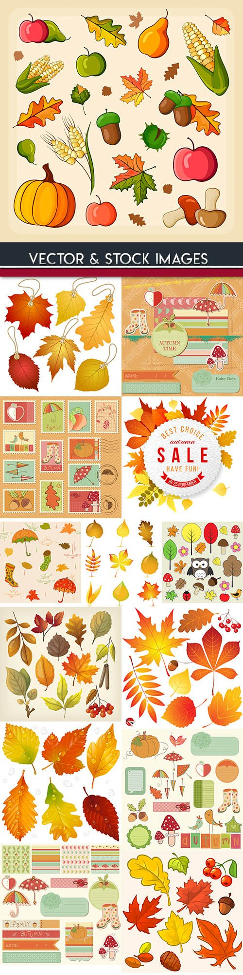 Autumn bright leaves decoration design element