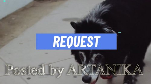 Request Slideshow 222408