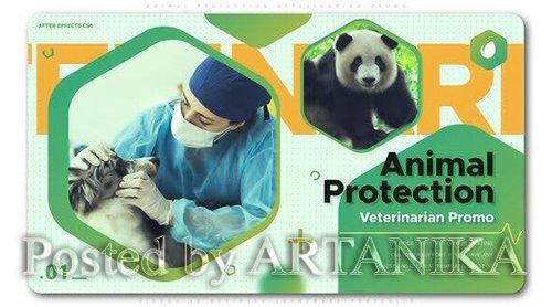 VideoHive - Animal Protection Veterinarian Promo 24939415
