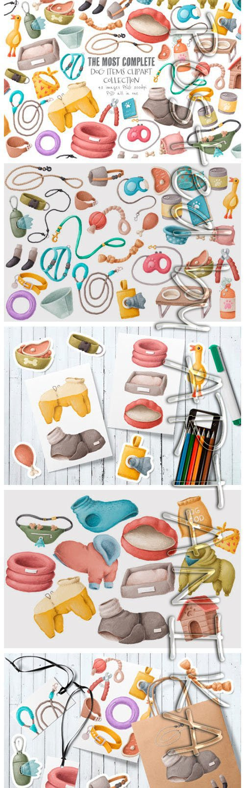 Dog Items Clipart Collection 2151116