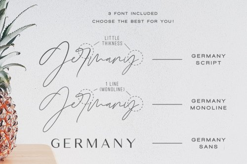 CreativeMarket - Germany - Luxury Font Duo 3491463