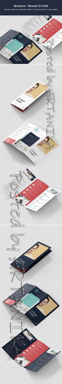 Brochure Resume Tri-Fold 24767799