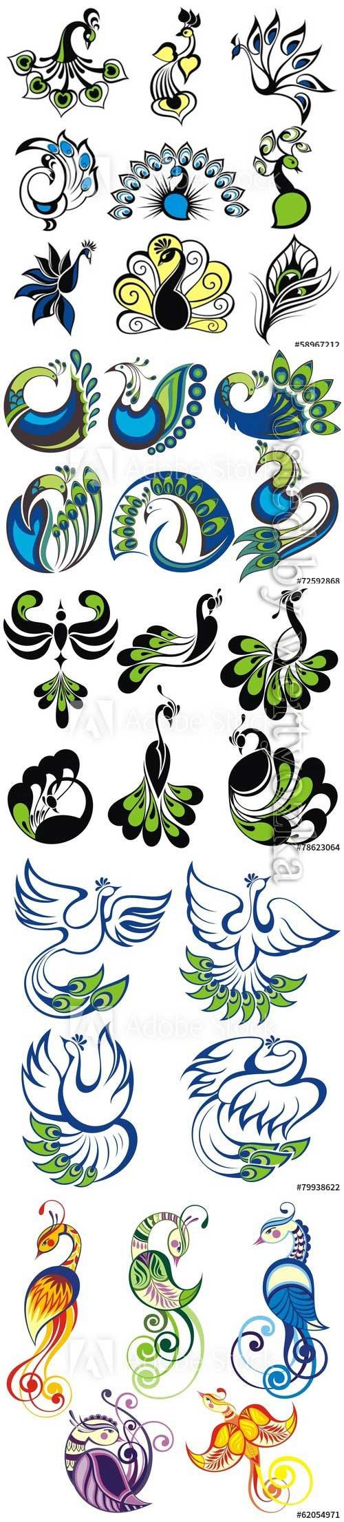 Birds icons, peacock vector birds
