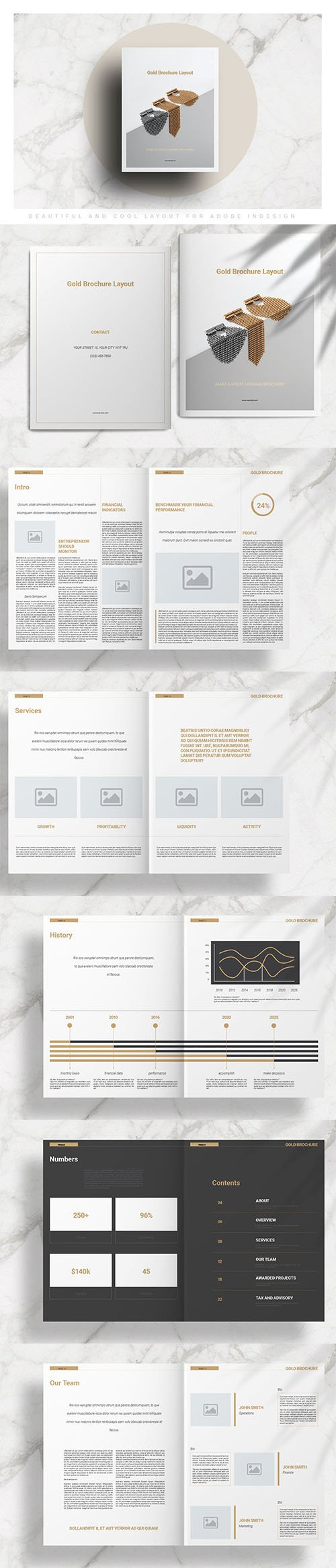 Gold Brochure Layout INDD