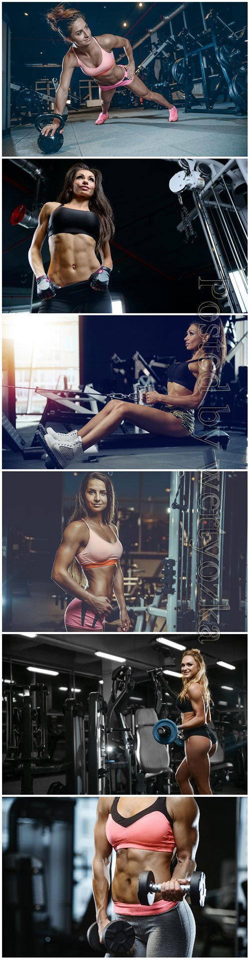 Beautiful girls in the gym