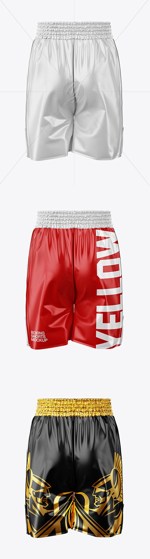 Boxing Shorts Mockup - Back View 49227