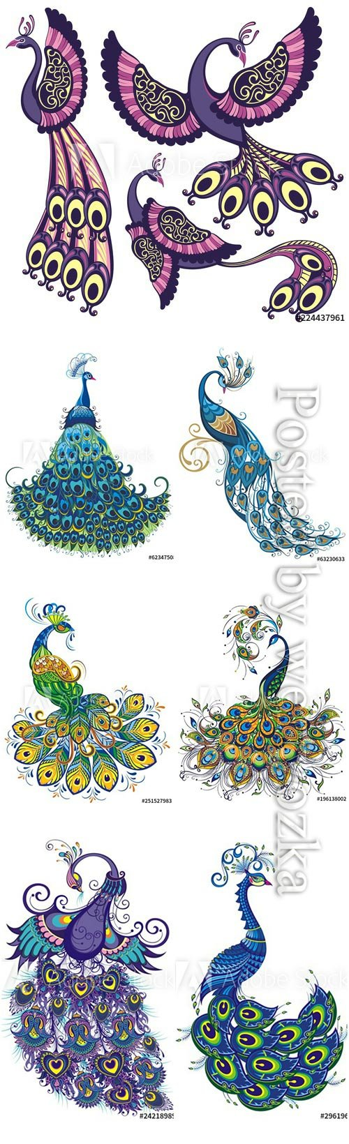 Peacock fantasy vector birds isolated on a white background