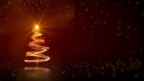 Christmas Tree Background 25245202