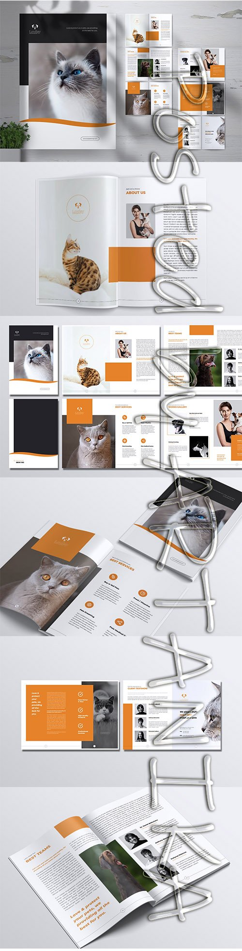 LOSI Pet Shop Business Brochure