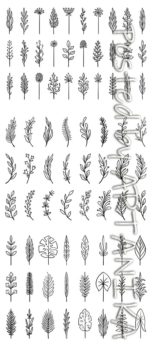 Floral Branch Hand Drawn Flower Collection