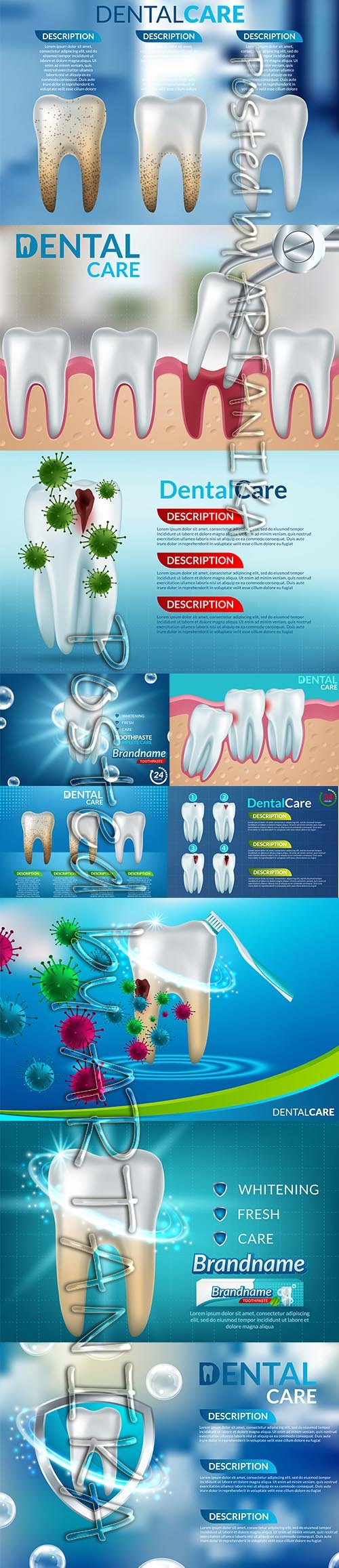 Collection of Dental Care Teeth Illustration