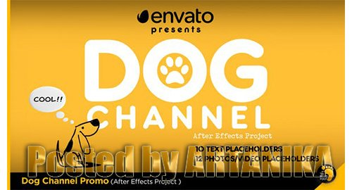 Dog Channel Broadcast Pack 23759634