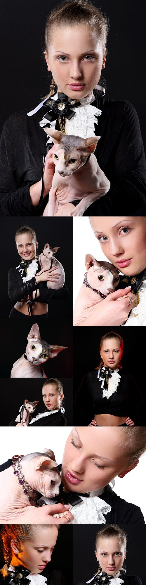 Attractive young girl with cat on her hands