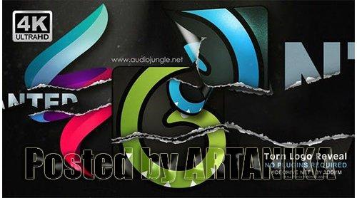 Torn Logo Reveal 24259405
