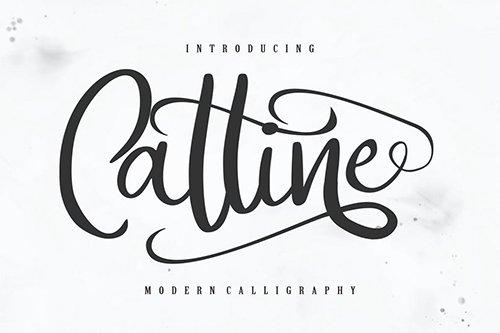 Catline | Modern Calligraphy Script