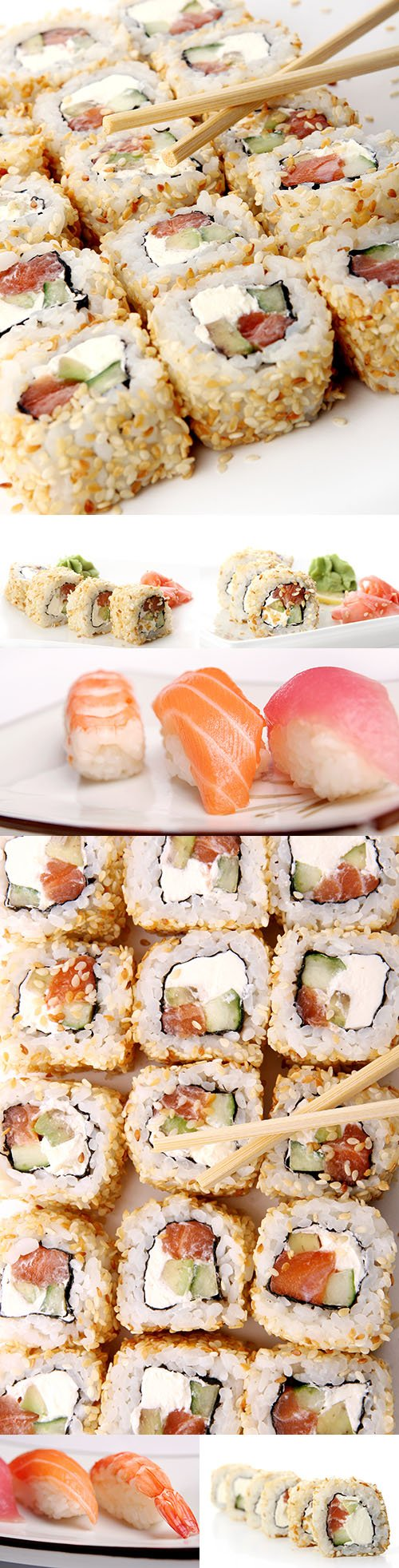 Fresh and delicious sushi rolls Japanese cuisine