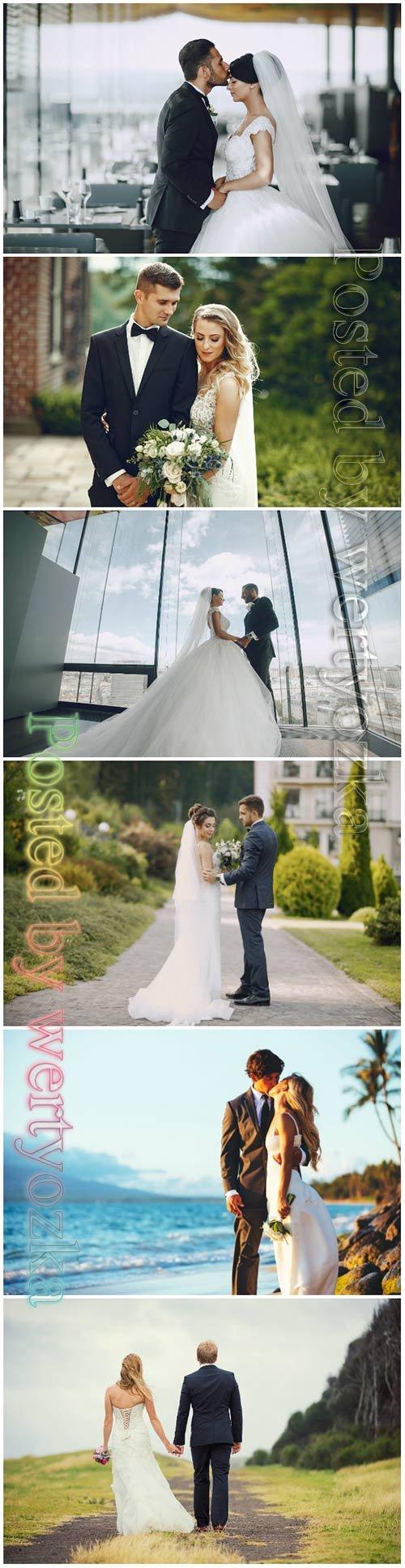 Elegant wedding beautiful stock photo