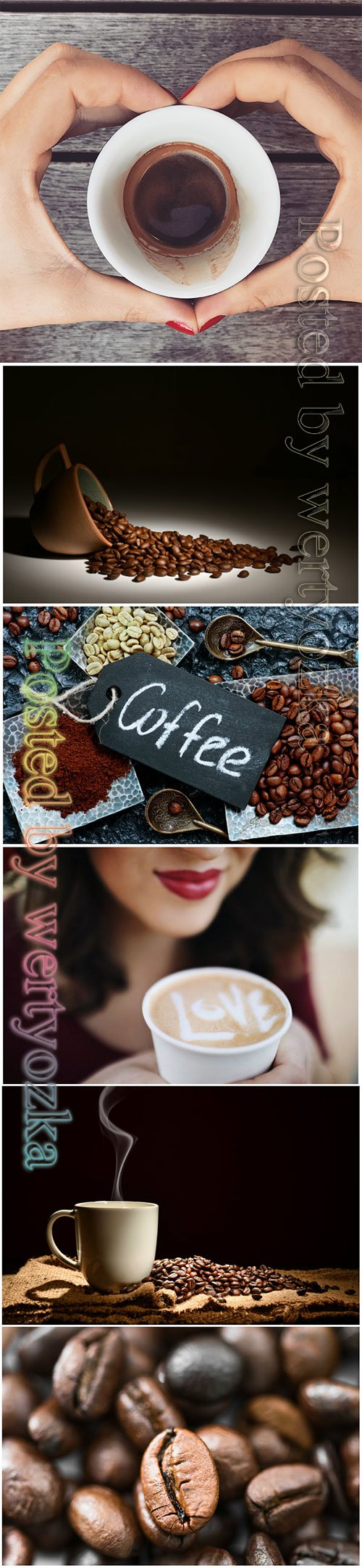 Coffee beans beautiful stock photo