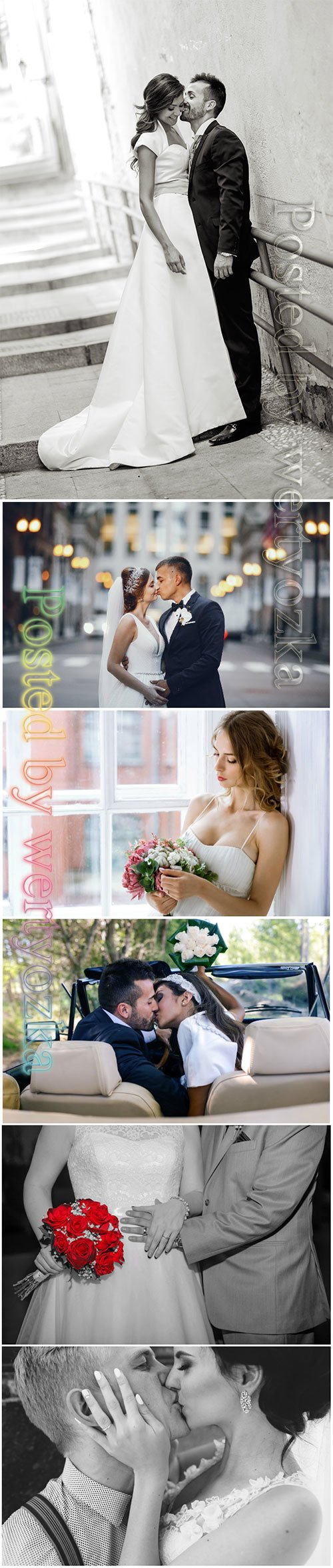 Bride and groom, wedding beautiful stock photo