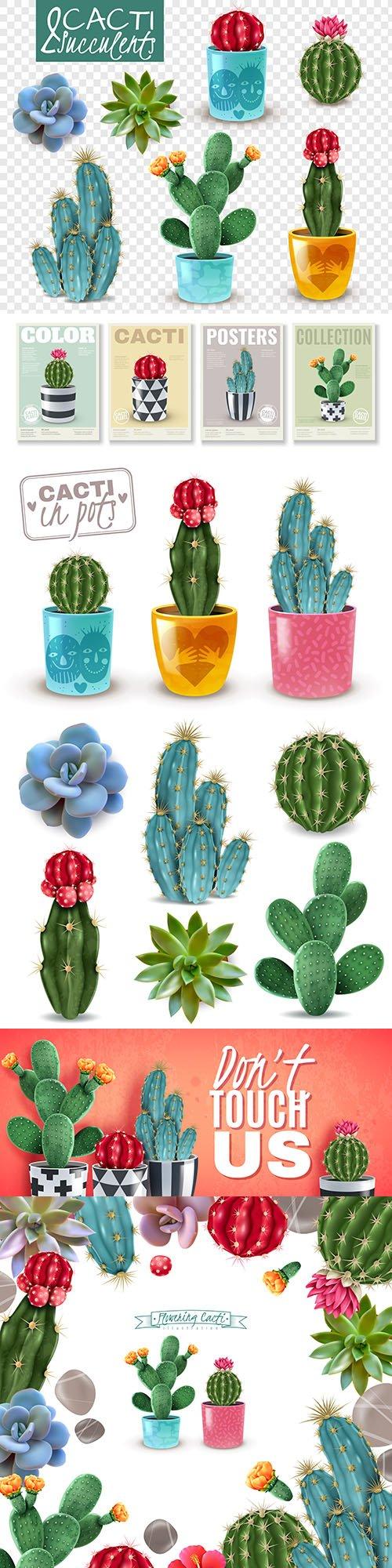 Flowering cactus room plants realistic illustrations