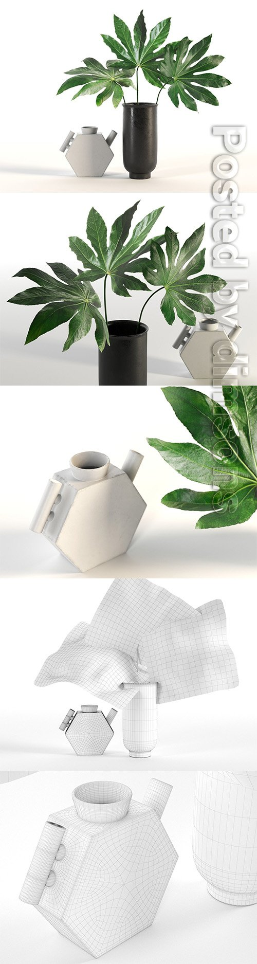 Aralia and Vases 3D model