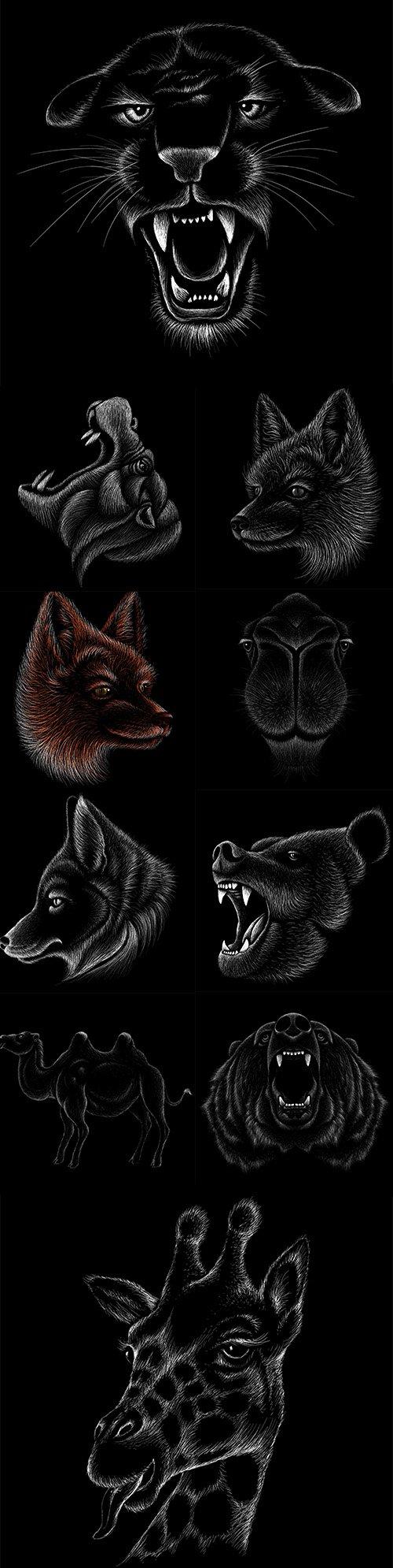 Hand Drawn Animals Illustrations Vector Set