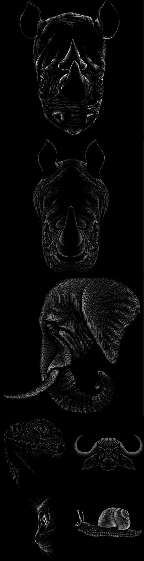Hand Drawn Animals Premium Vector Set 2