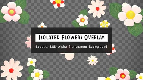 Isolated Flowers Overlay 25506664