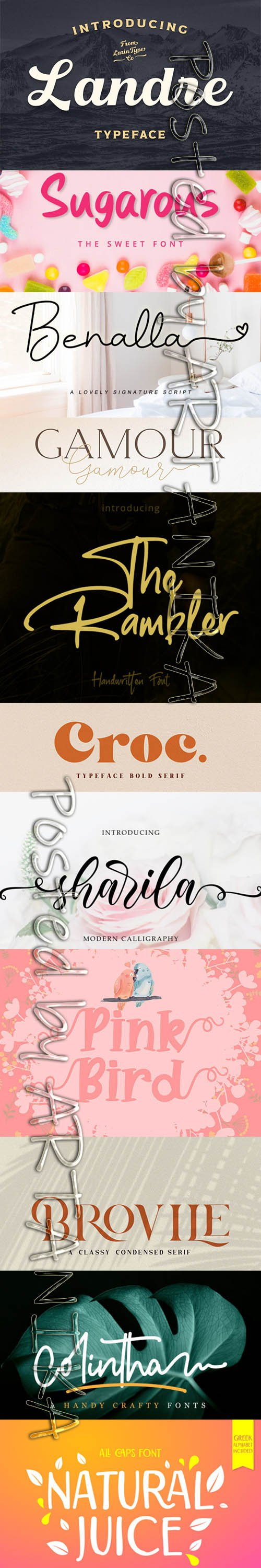 Collection of 11 Creative Fresh Fonts 2020 Vol 8