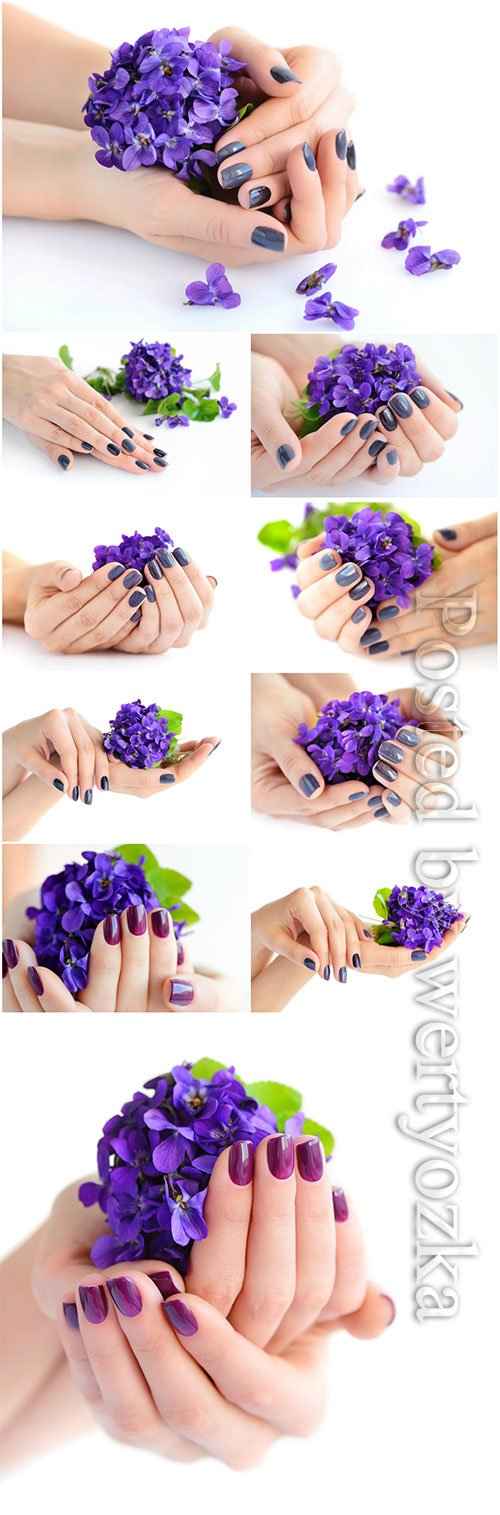 Manicure, female hands with flowers beautiful stock photo
